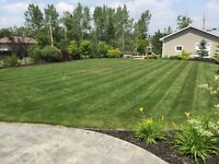 Lawn Mowing and Trimming by Benchmark Lawn and Snow