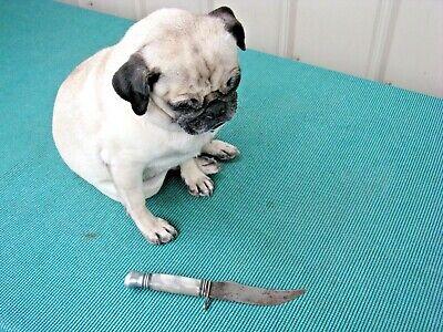 "Vintage Olsen Knife Co. 2700 BP - 5"" Blade Pearl Handle Solingen Germany"