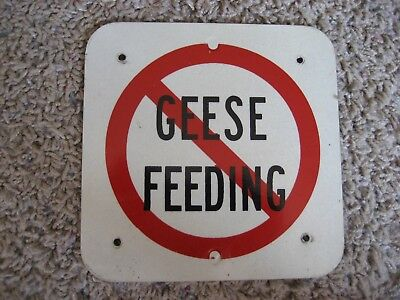 Sign - No Geese Feeding Aluminum Metal 6 X 6