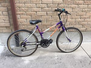 Raleigh Kids Mountain Bike 5 speed
