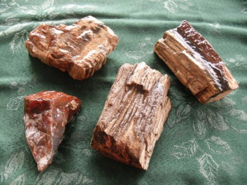 Petrified Wood  -   Different  Areas   - Arizona  -  4  Pieces