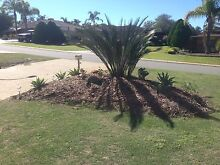 2 Rooms Available, POOL, ECU. BEACH, SHOPS, Joondalup Joondalup Area Preview
