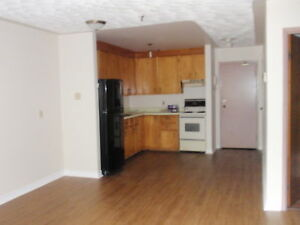 Walk to Downtown, Parking, Laundry-laminate flooring