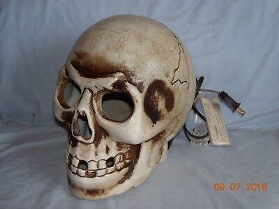 Realistic Halloween Lighted Giant Skull Head (10