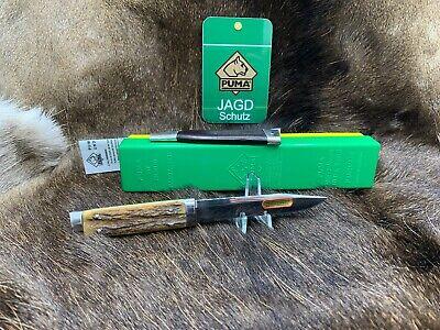 1974 Vintage Puma 3573 Bayermesser Knife Knife With Stag Handles Mint - G/Y Box