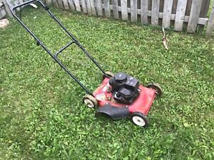 Lawnmower amazing machine but just died on me