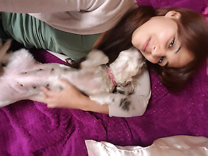 Doggy Sitter / Dog Walking Balga Stirling Area Preview
