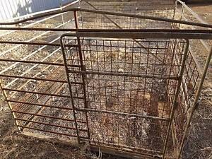 Ute stock crate Yorketown Yorke Peninsula Preview