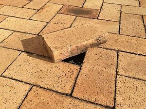 Pavers for garden Cleveland Redland Area Preview