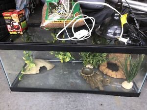 Terrarium with everything (pick up Coquitlam area)
