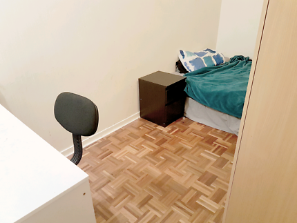Chatswood own room for clean and tidy male
