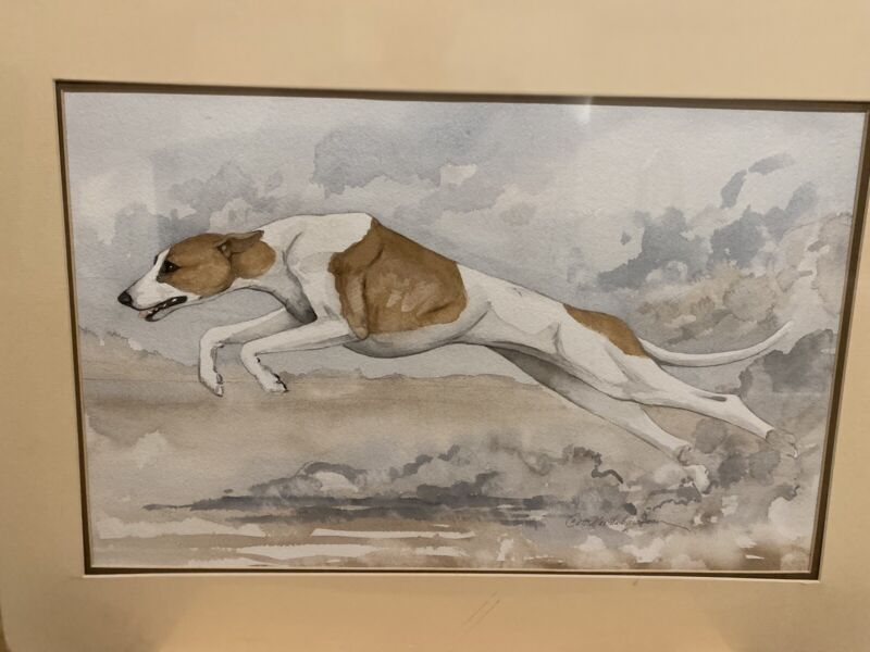 Original Watercolor Painting Of A Running Whippet By Martha Van Loan 14x21 Mat