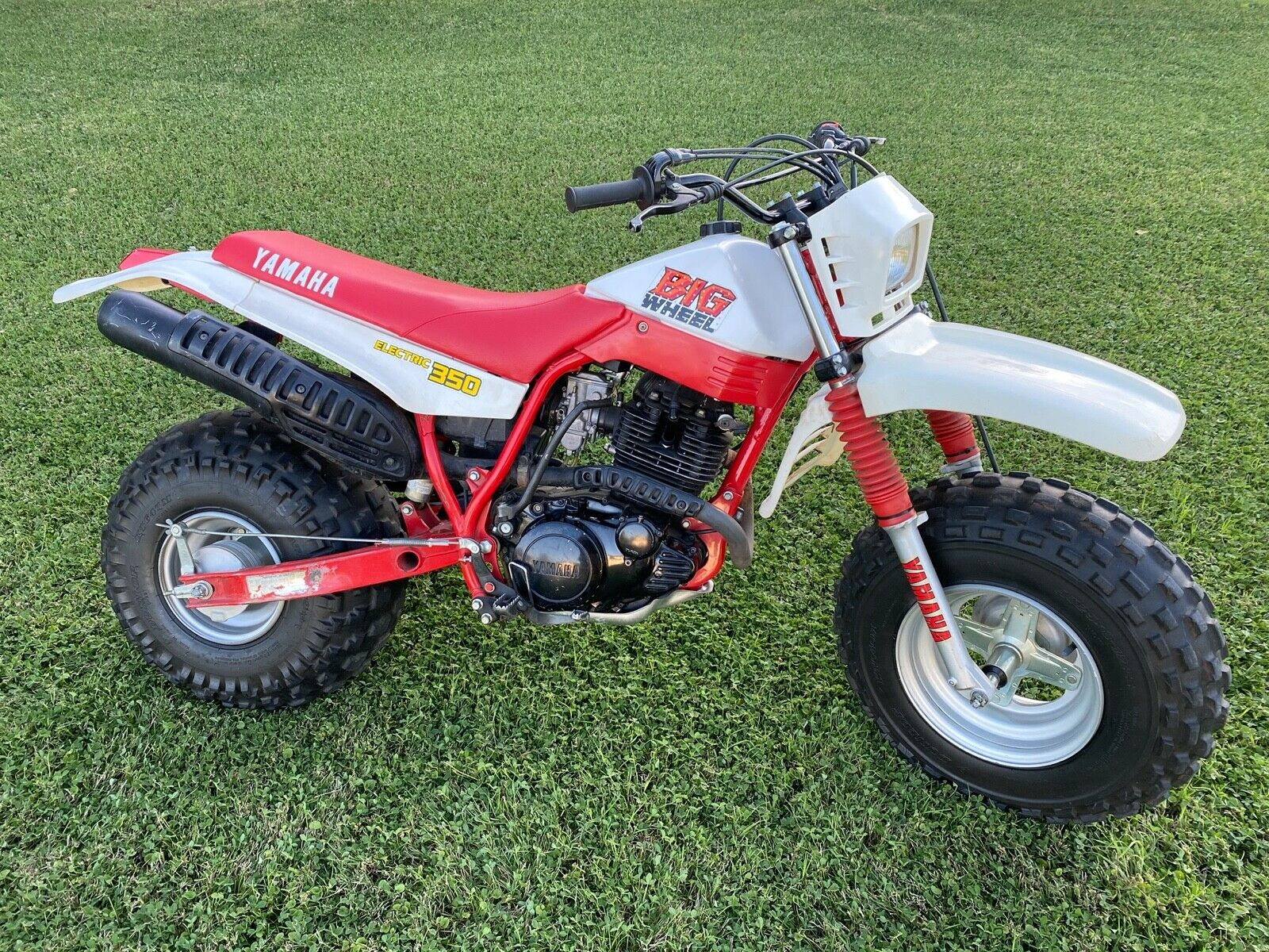 Picture of A 1987 Yamaha BW350 BW 350 350