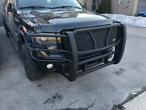 F-150 brush bar