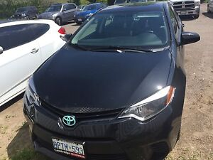 2015 Toyota Corolla ce 147 bi-weekly .99% serious only gone asap