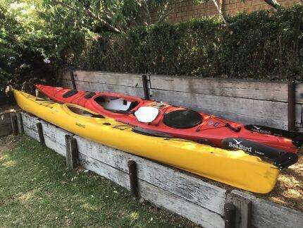 Sea kayak seabird expedition