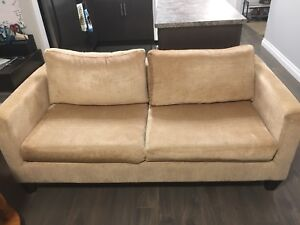 Sturdy Couch needs loving home