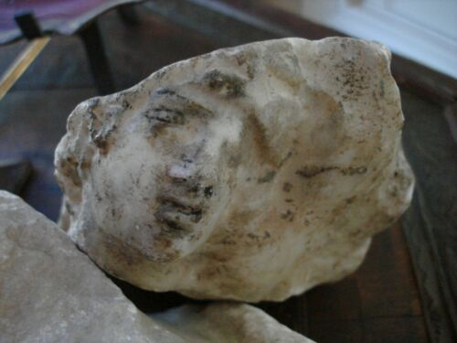 ANCIENT ART AND ROMAN ANTIQUITIES: MARBLE HEAD FRAGMENT