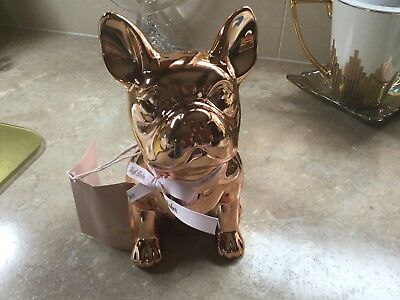Ted Baker Rose Gold  French Bulldog Money Box (BNWT)