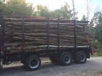 Triaxle log truck wanted ASAP to move loads