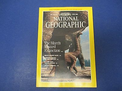 National Geographic Magazine June 1989  Dinosaurs  Malta  Tibetan Nomads  Acorns