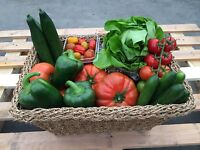 Fresh Locally Grown Produce for Sale