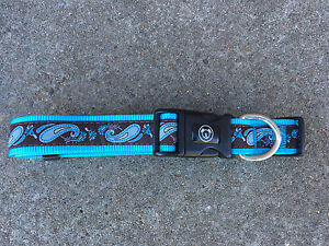Brand new Large dog collar Tenambit Maitland Area Preview