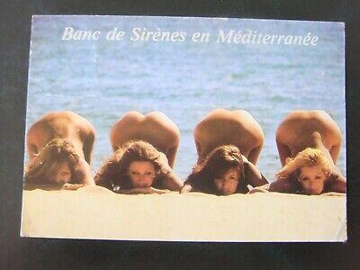 HUMOUR - Vacances - Banc de sirènes en Méditerranée ( femmes nues !)