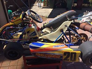 monarco 100s go kart electric start Coolaroo Hume Area Preview