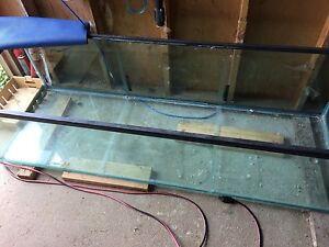 125 gallon aquarium