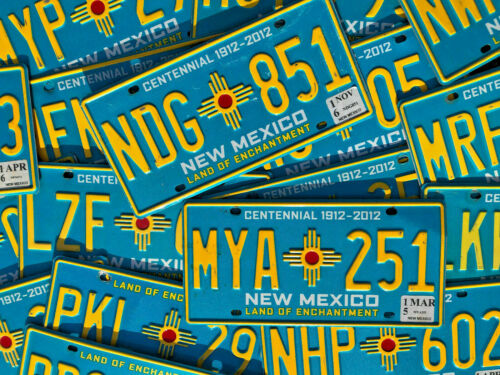 10 New Mexico Turquoise License Plates
