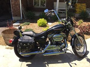 2007 Harley Davidson XL 1200...NEW PRICE