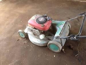 Masport Self Propelled Mower Mid Murray Preview