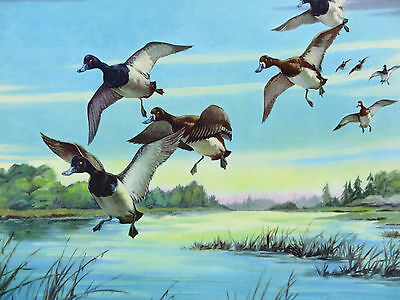 """Vintage 1949 Art Print Litho """"Coming In"""" 5313 C. MOSS"""