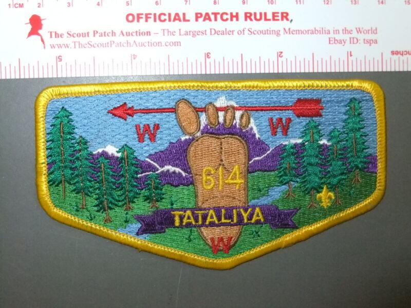 Boy Scout OA 614 Tataliya flap 2225EE