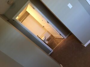 Brand New 2 bedroom condo for rent in SW off James Mowatt