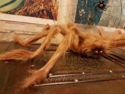 Gruselige, eklige RIESENSPINNE 60-80 cm! Halloween-Deko SPINNE schwarz/braun (Riesen Spinne Halloween Deko)