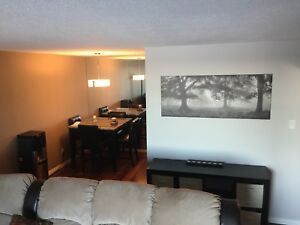 Furnished condo apartment 4 rent.St.Vital,Heated parking,U of M