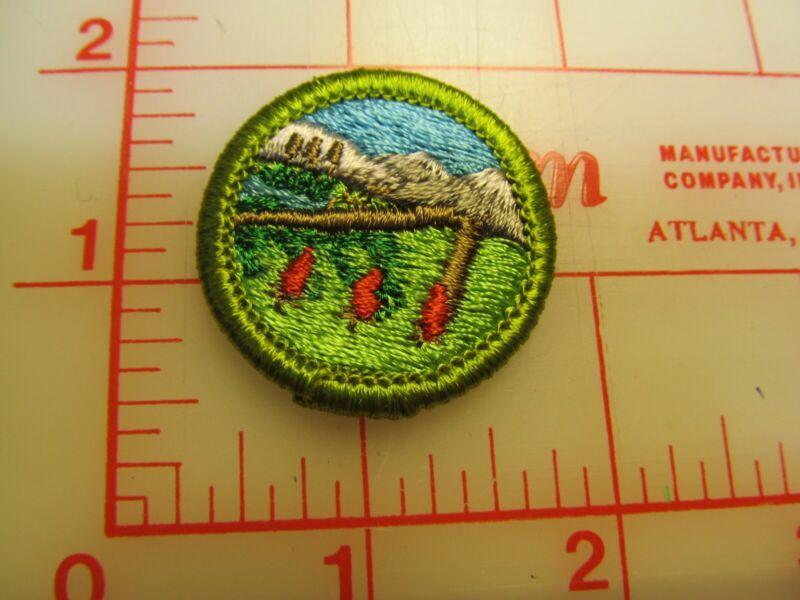 WILDERNESS SURVIVAL merit badge plastic backed patch (oP)