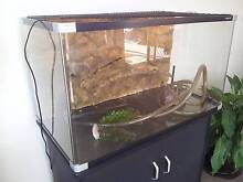 Reptile One 3ft Turtle Tank - Complete Set Up Forster Great Lakes Area Preview
