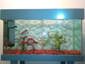 3ft Fish Tank /Aquarium with Stand and Hood Thornlie Gosnells Area Preview