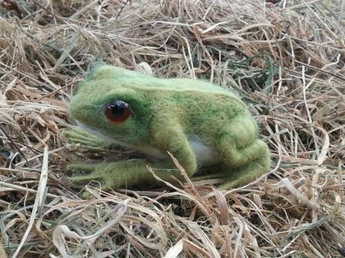 Frog Needle Felt Kit British wool