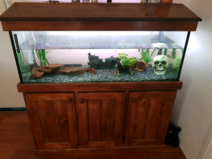 4 ft topical set up