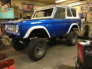 Ford bronco custom project