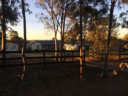 FOR SALE HORSE PROPERTY   Greta Cessnock Area Preview