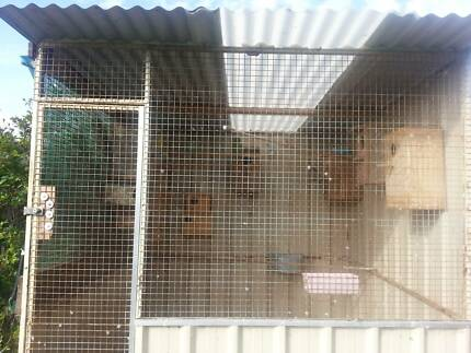 2mtrx2mtrx2mtr square aviary +1x patio cage Doveton Casey Area Preview