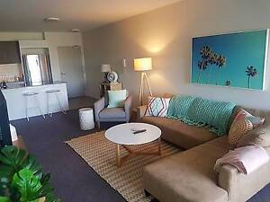 Looking for a roommate - Brand new furnished unit + WiFi included Lutwyche Brisbane North East Preview