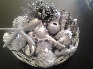Silver seashells Charlestown Lake Macquarie Area Preview