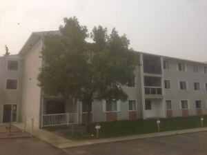 One bedroom apartment suite for rent in Mill Woods