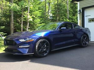 2018 Mustang GT Premium  ONLY 3000kms!